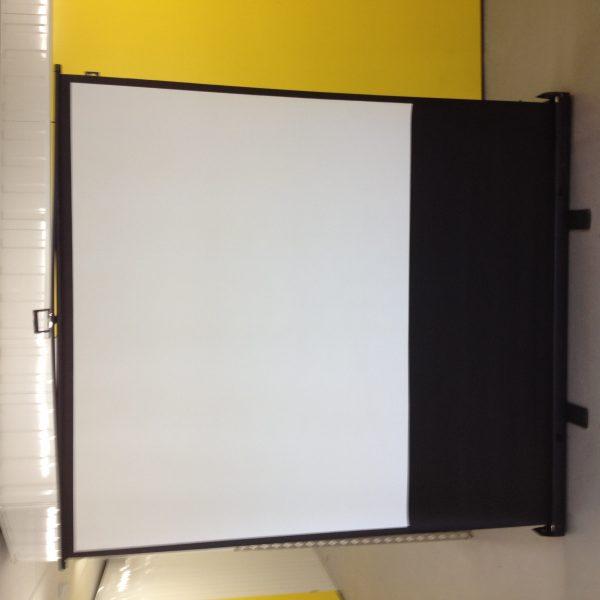 lrg sized projector screen